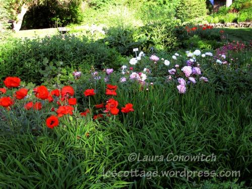 Manito 06-15-2012 094bc