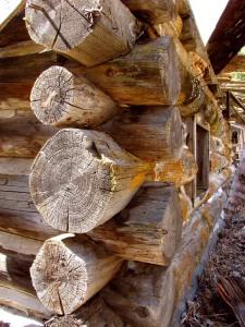 Detail of Log Building