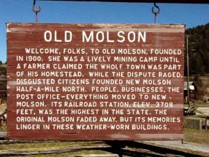Old Molson Sign