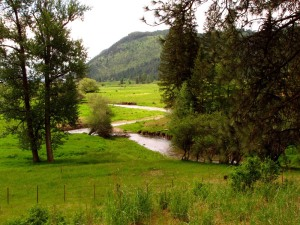 Mill Creek 3