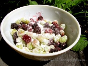 Gooseberries and Blackberries