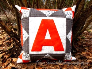 Aiden Pillow