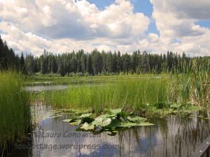 Little Twin Lakes