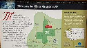 Mima Mounds July 2018
