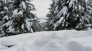 Snow March 2019