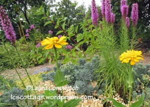 Zinnia and Liatris