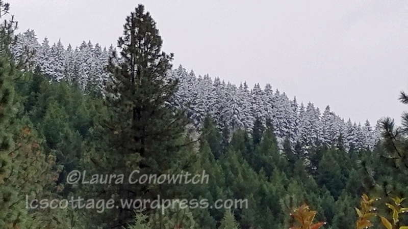 09-28-2019 Early Snow Storm