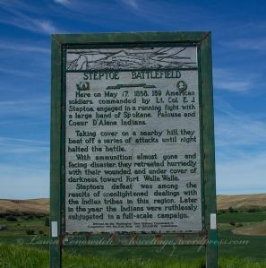 Steptoe Battlefield