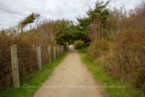 Dungeness Recreation Area