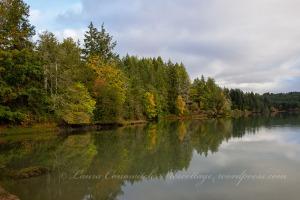 Kennedy Creek Natural Area Preserve